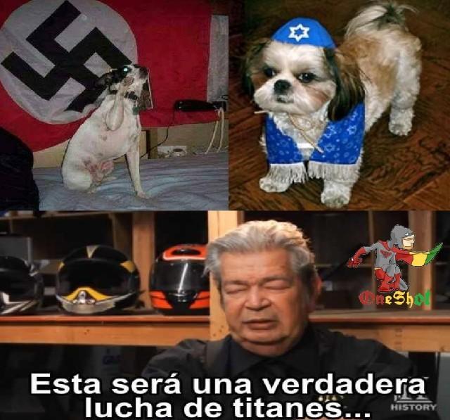 Hi Hitler dog - meme