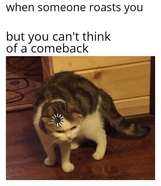 when yoi get roasted - meme