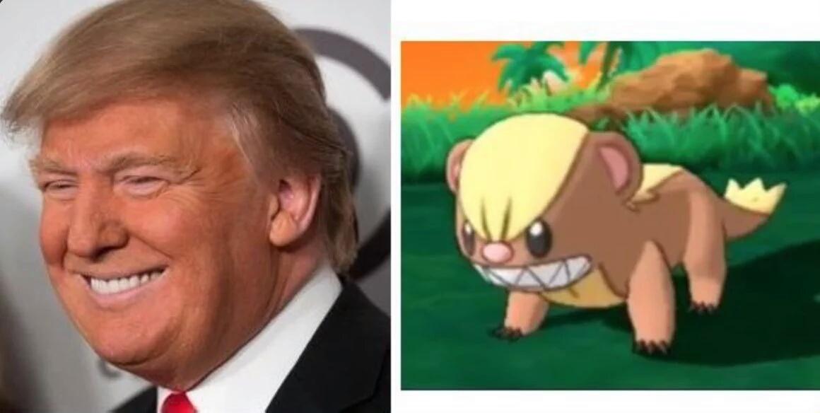 Nuevo pokémon Donald Trump xdxdxd - meme