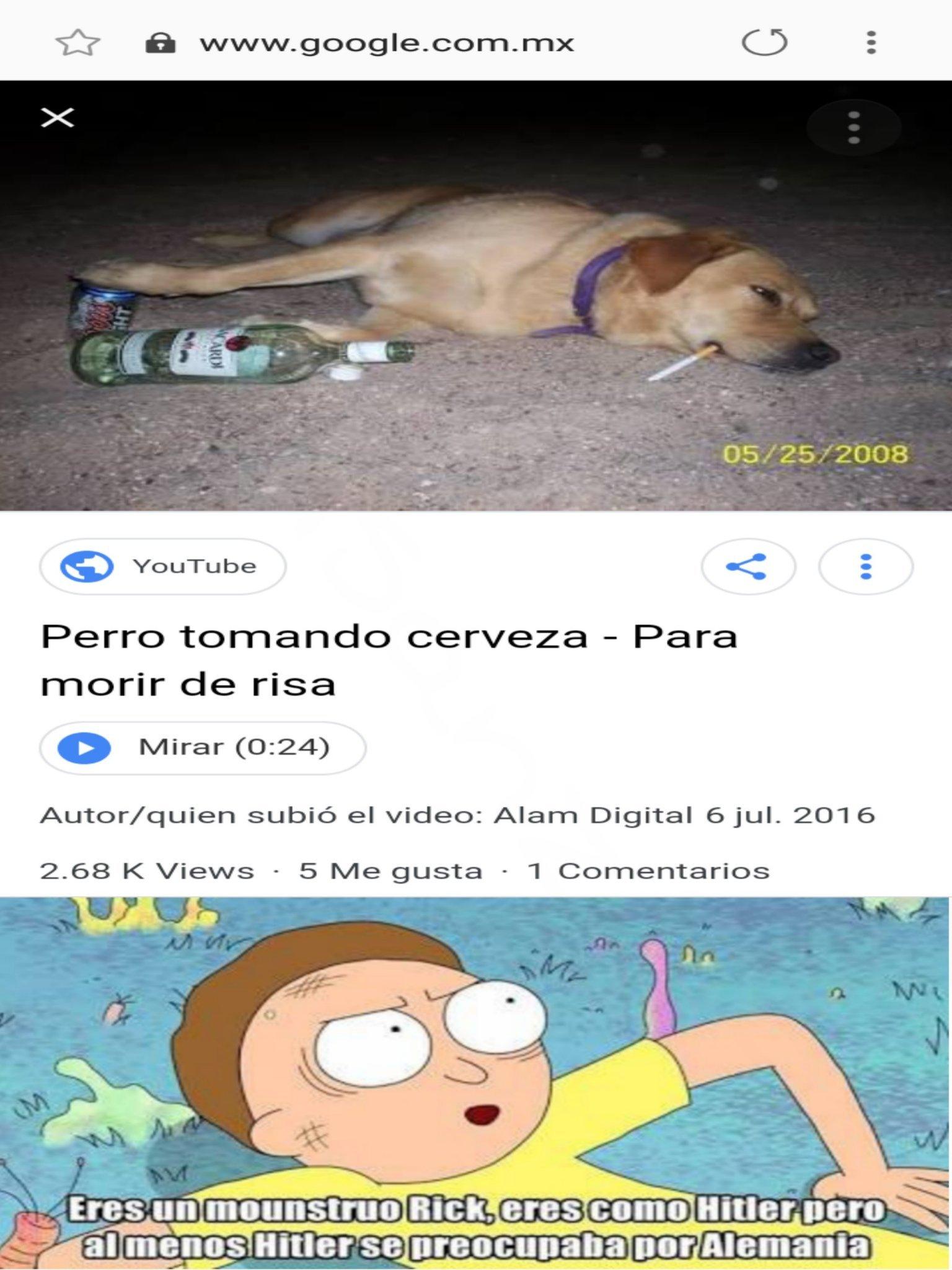Pobre firulais - meme