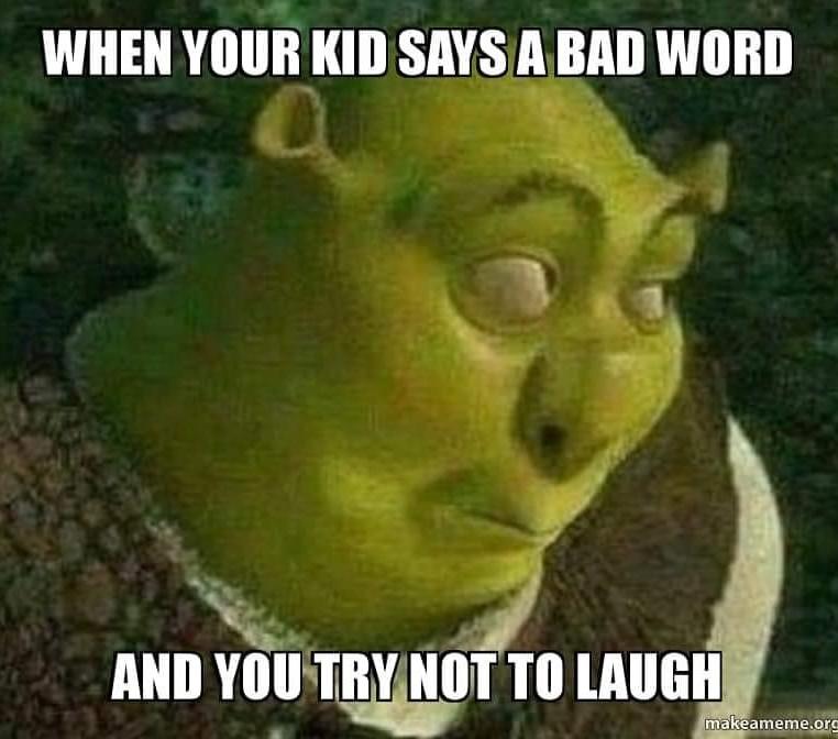 Parenting - meme