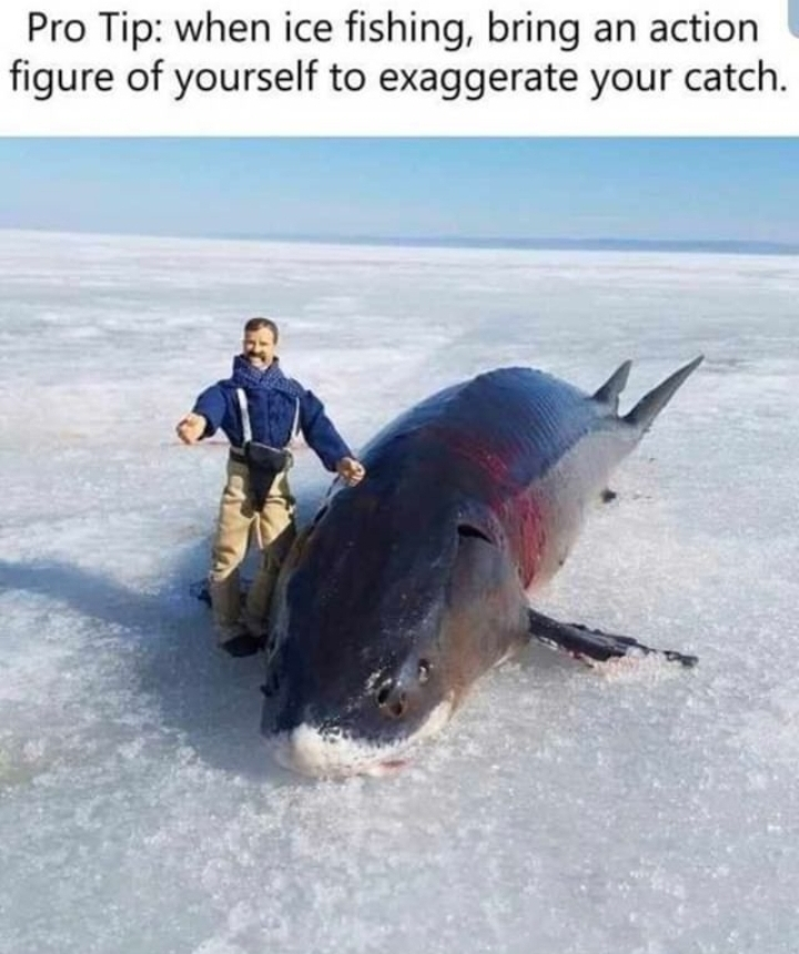 Fishing - meme