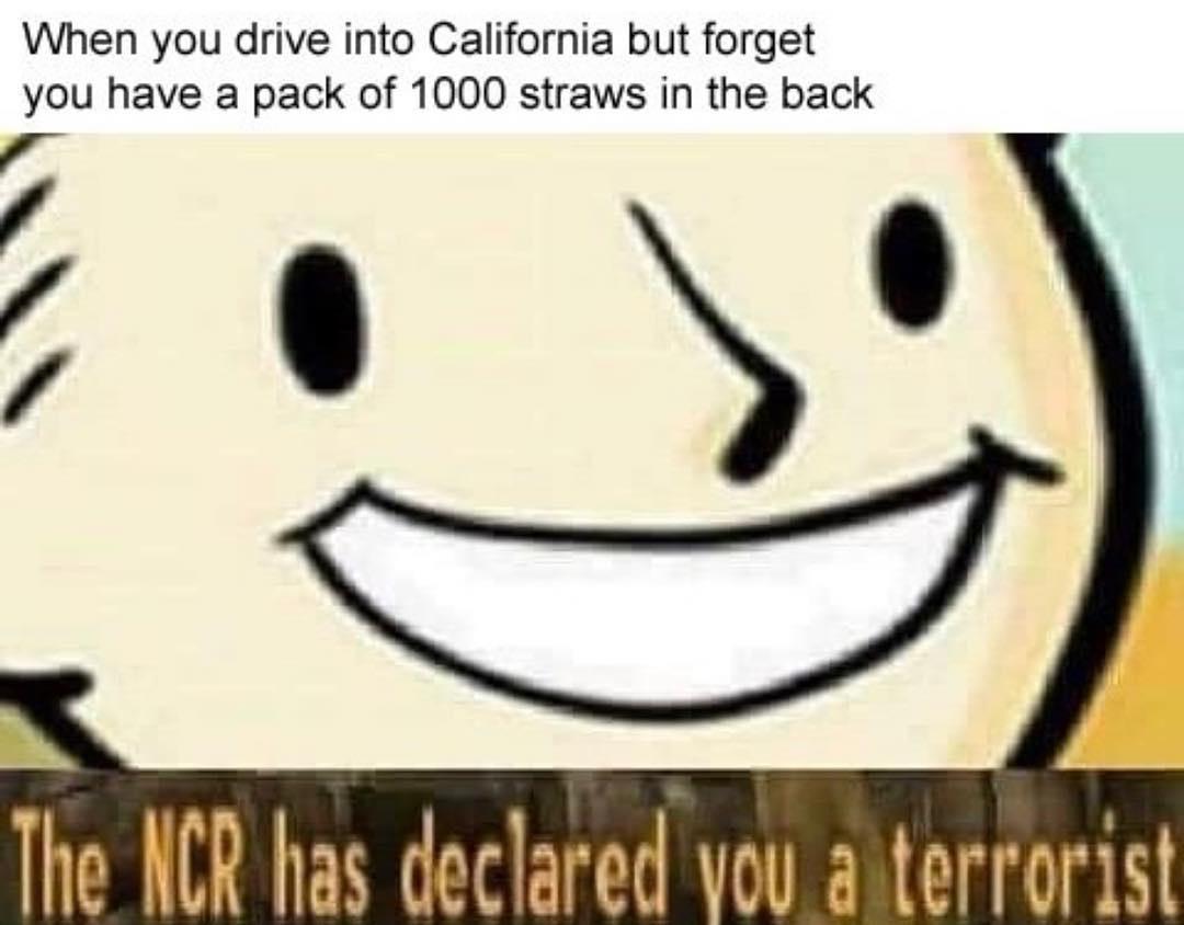 STOP THE CAR NOW - meme