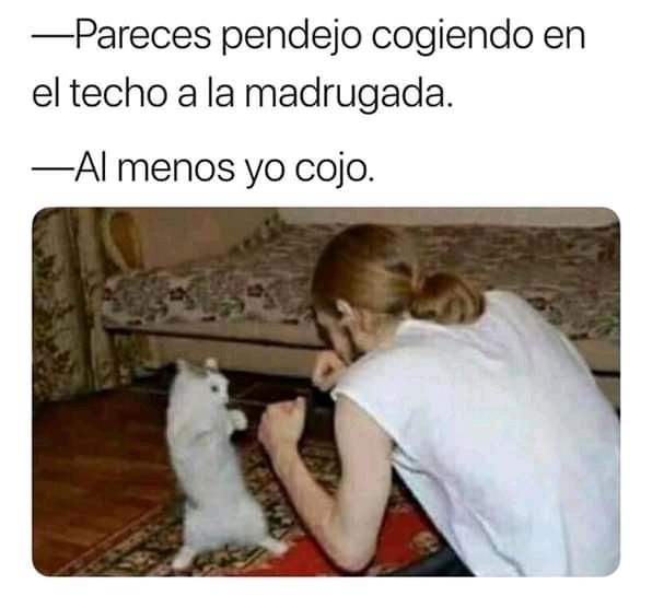 Jajaj c mamo - meme