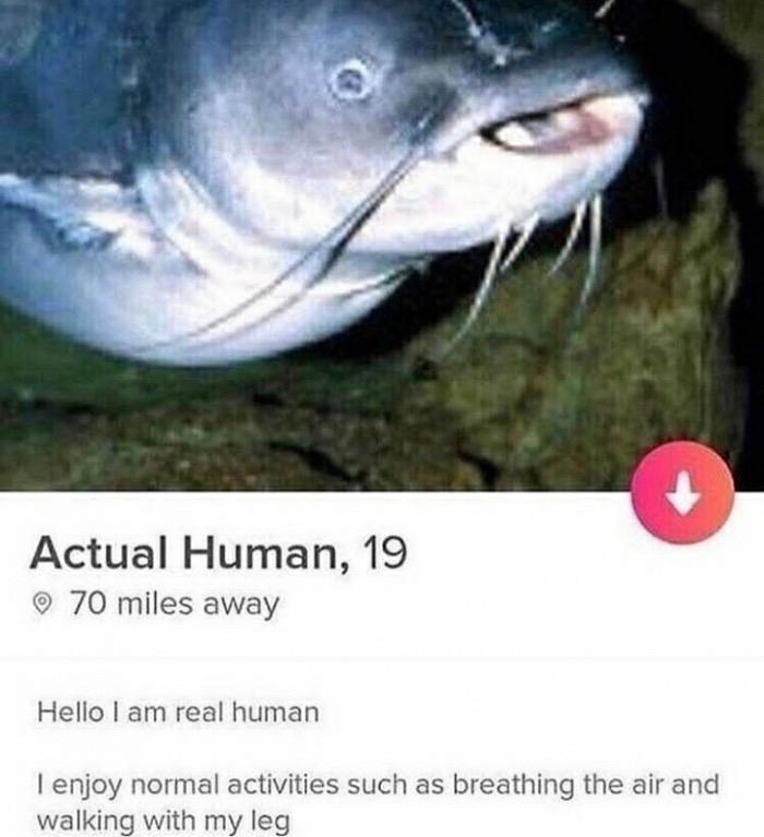Human - meme