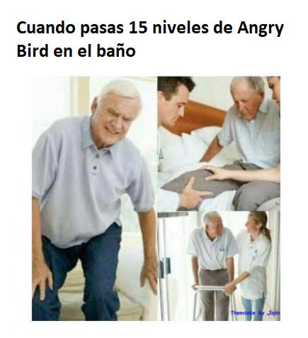 Angry Bird - meme