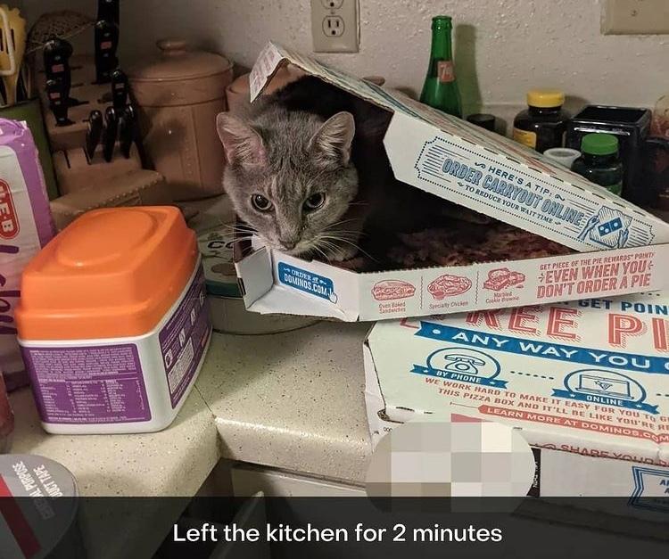 warm pizza - meme