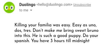 duolingo strikes again - meme