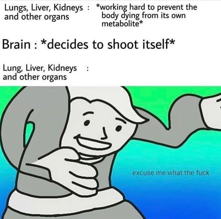 High quality - meme