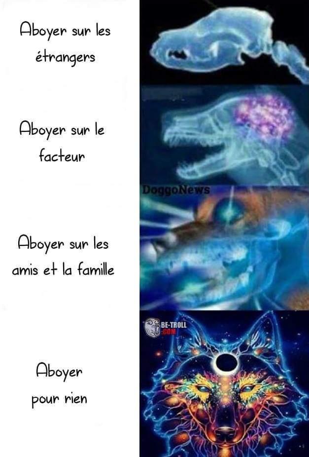 100 %  - meme