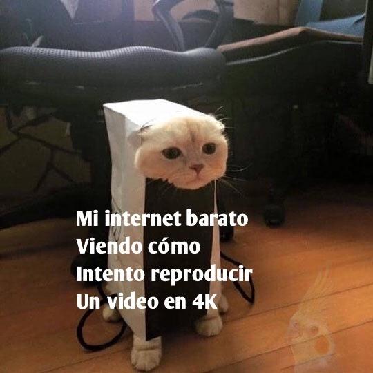 >:,c - meme