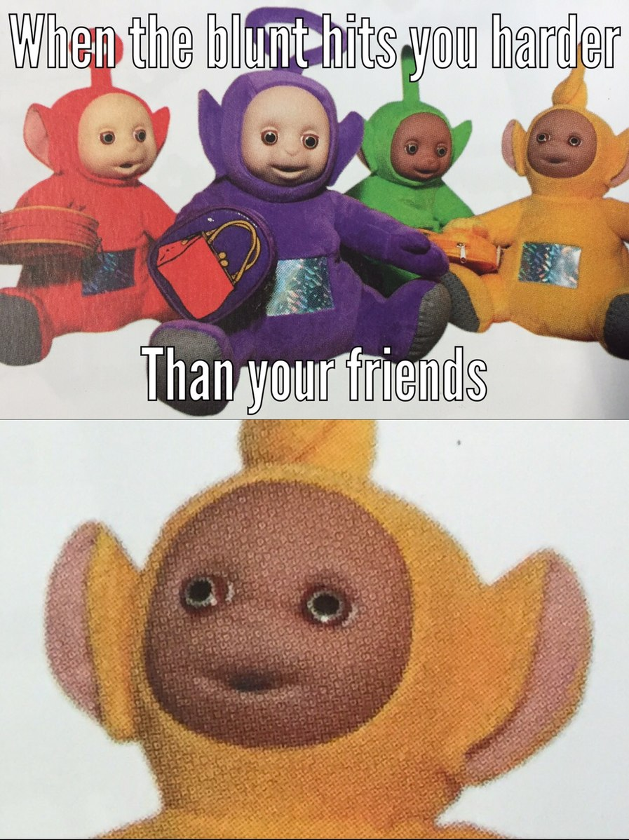 Teletubbies fucked my puppies - meme