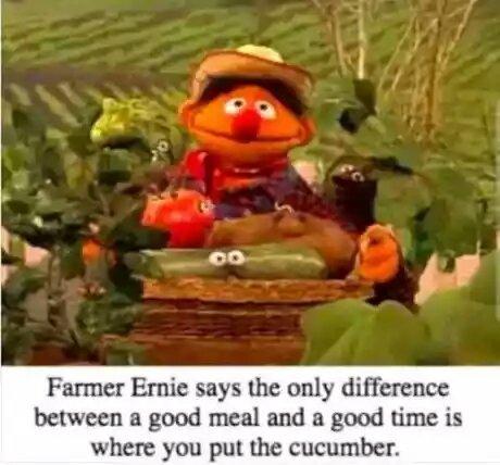 Cucumbersnatch - meme