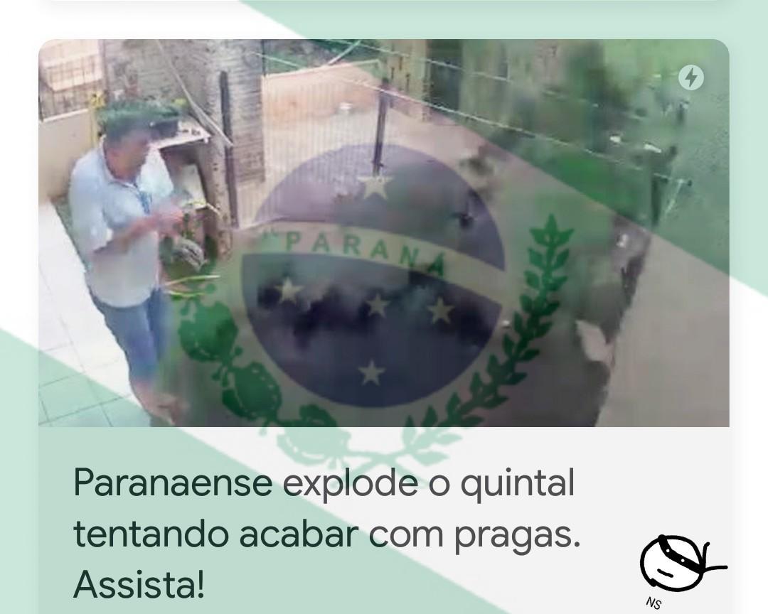 Paraná, melhor estado do Sul e do meu país ~~o Sul~~ - meme