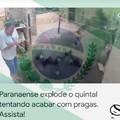 Paraná, melhor estado do Sul e do meu país ~~o Sul~~