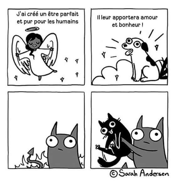 Cadeau du diable - meme