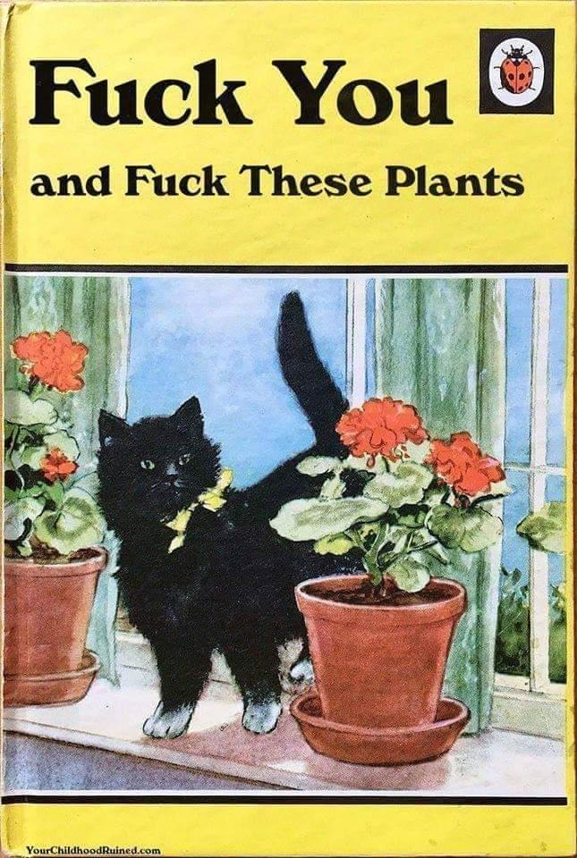 Great book - meme