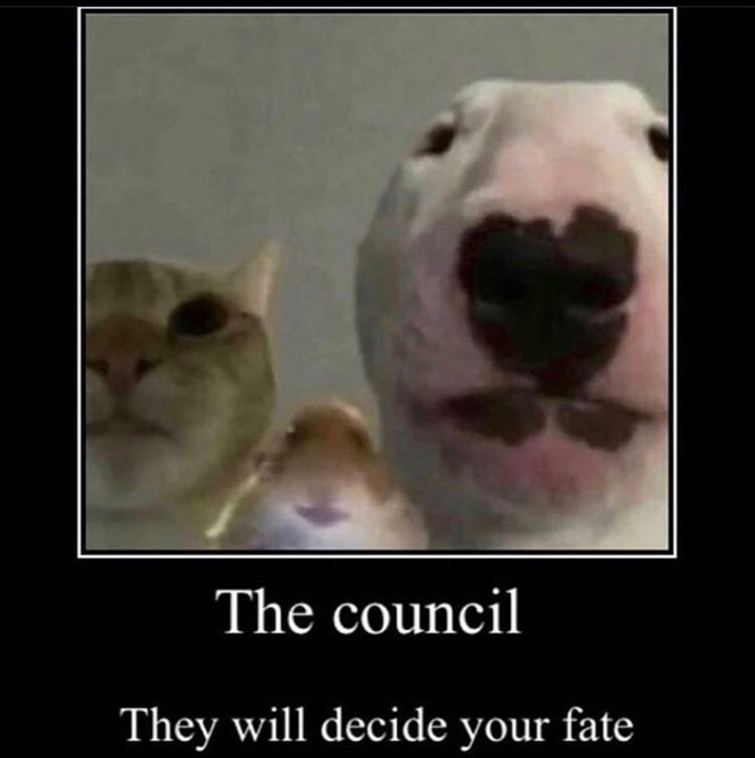 The council - meme