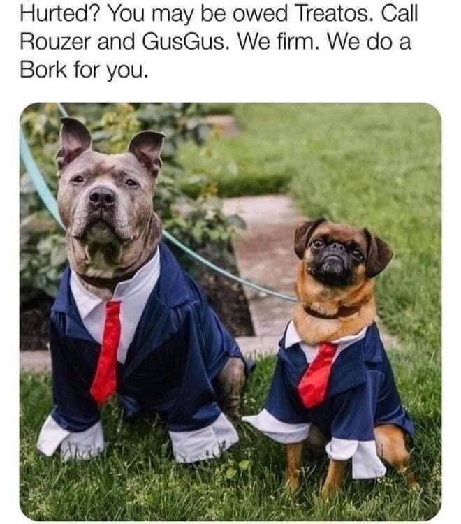 The only lawyers I would trust - meme