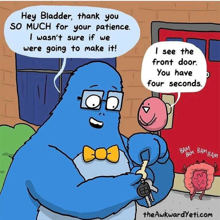 Bladder - meme