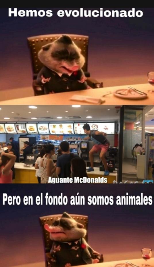 Seguimos siendo animales - meme