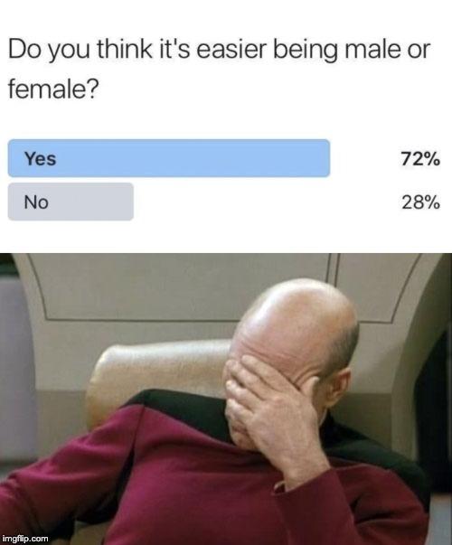 Le génie humain n'a pas de limites - meme