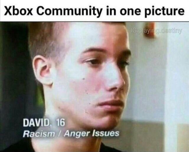 Xbox Community in one picture - meme