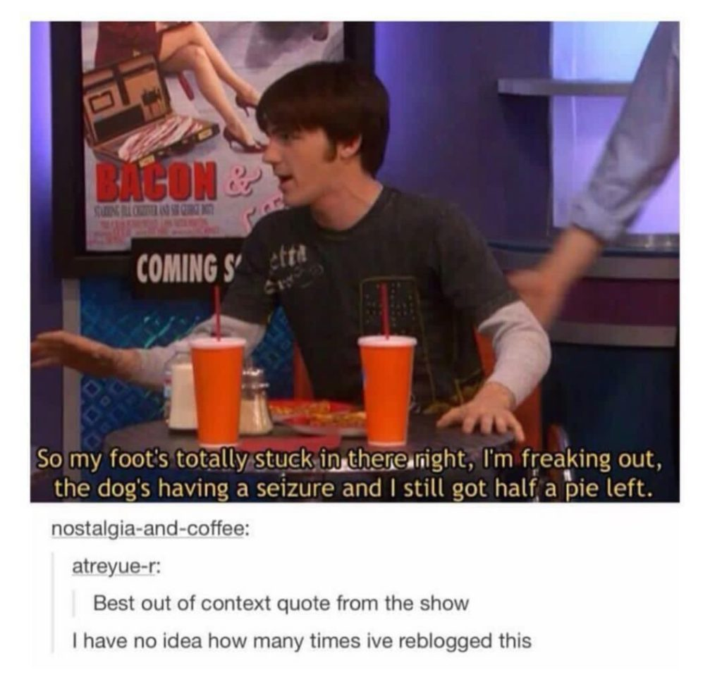 I MISS DRAKE AND JOSH.... - meme