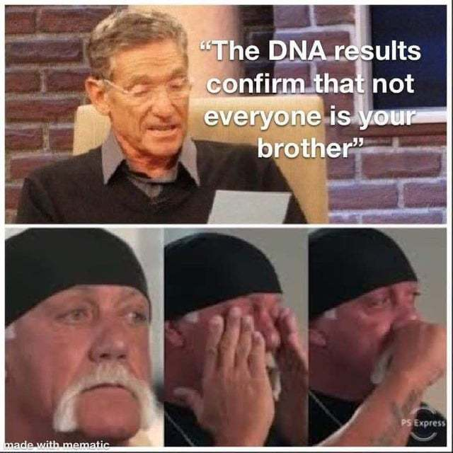The DNA results confirm that not everyone is your brother - meme