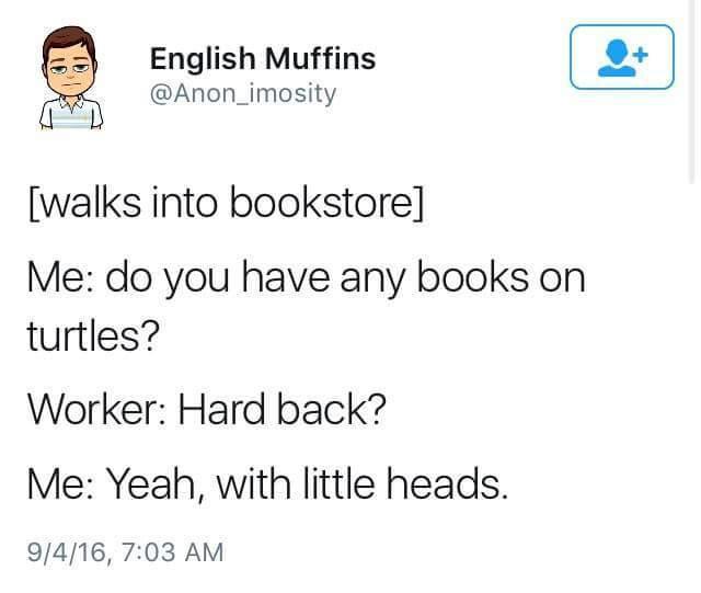 I like turtles - meme