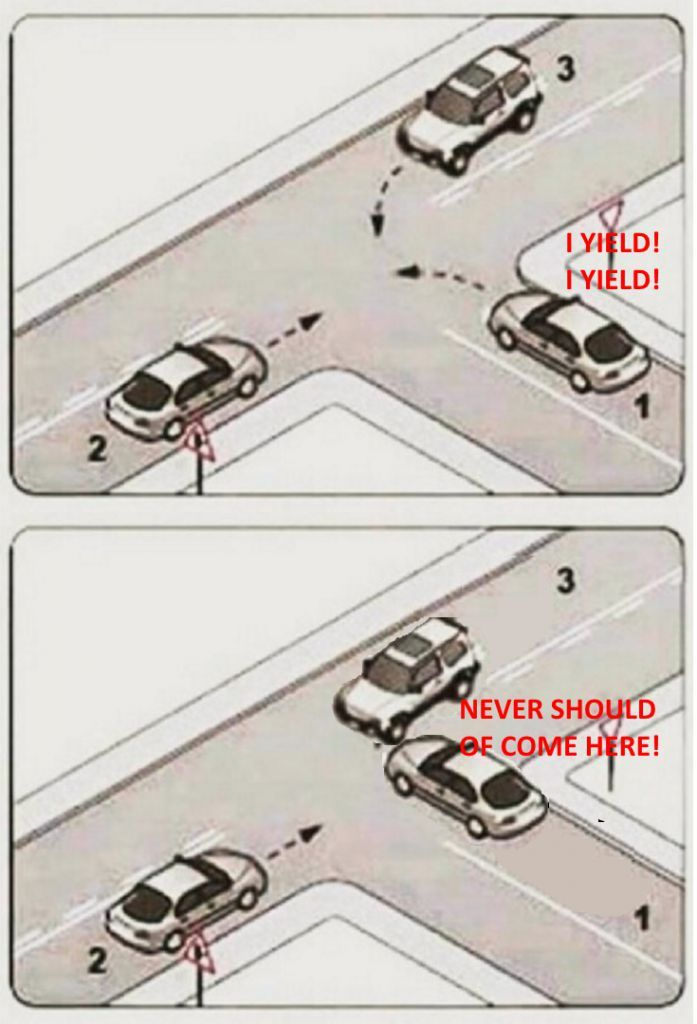 dongs in an intersection - meme