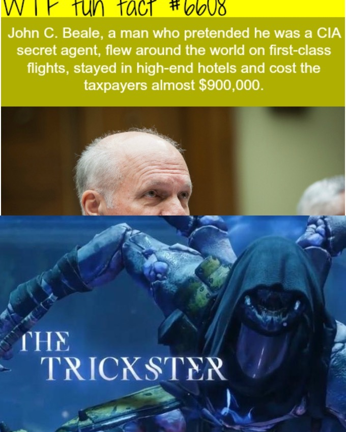 The trickster - meme