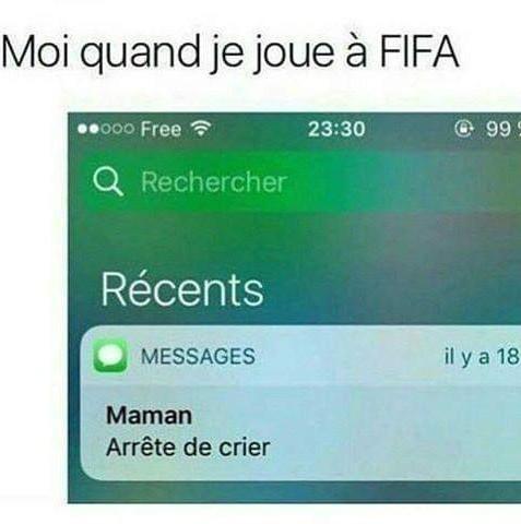 Moi quand je joue à Fifa - meme