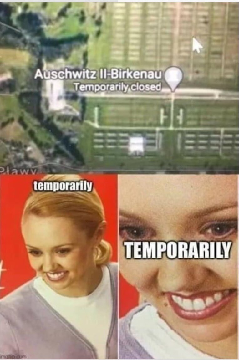 Temporarily ?! - meme