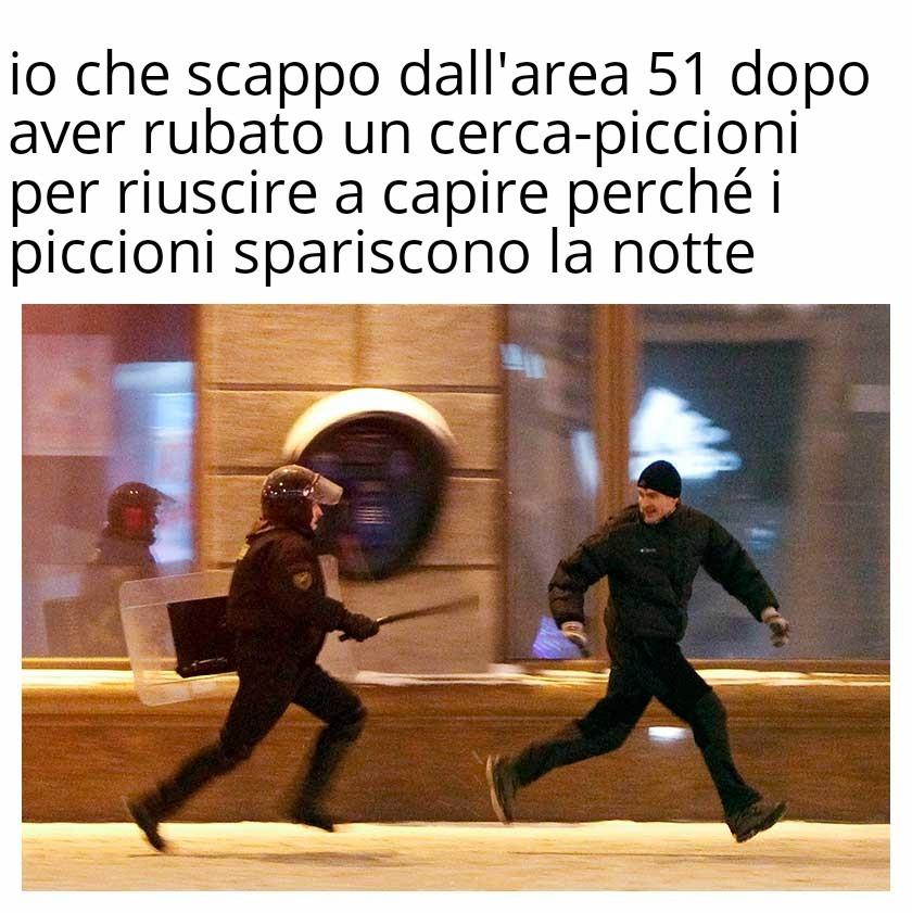 PICCIONI - meme