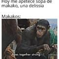 Los buenos makakos XD