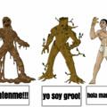 Tipos de seres vivos
