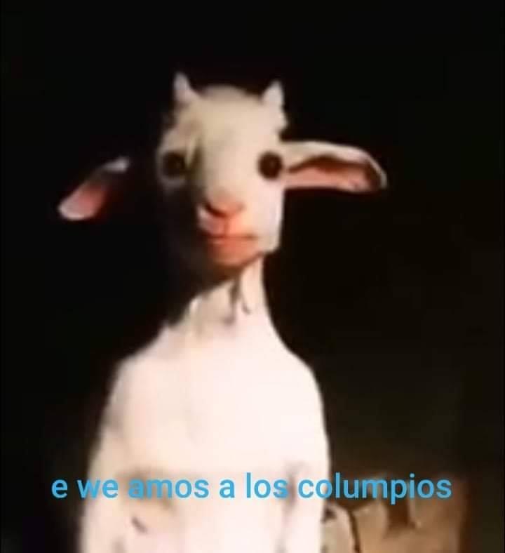 perturbador (PD: el cabro que grabo el video de esa cabra altos huevos tiene - meme