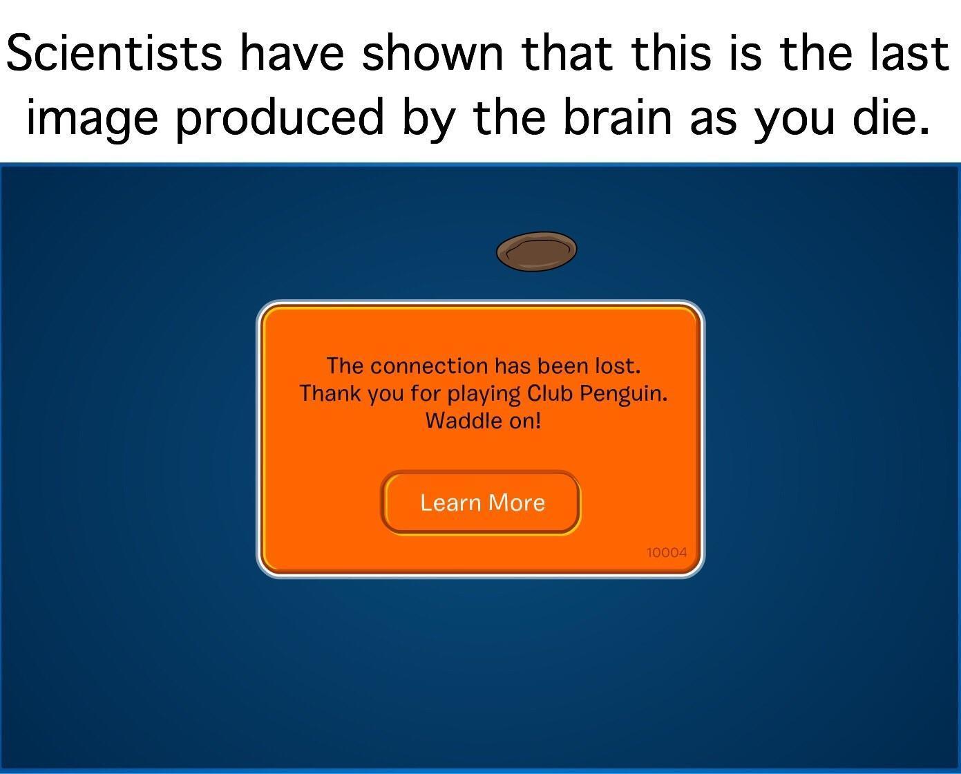 Última imagem produzida pelo cérebro antes de morrer - meme