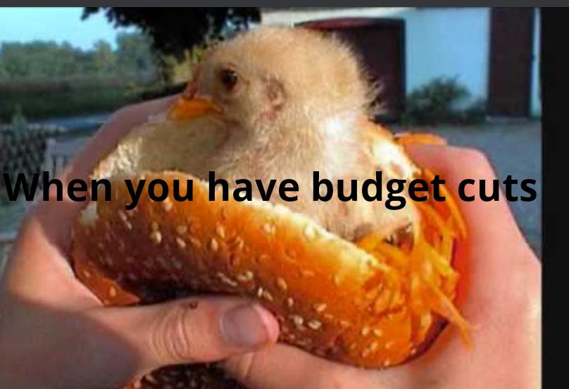 Chiken nuggs - meme