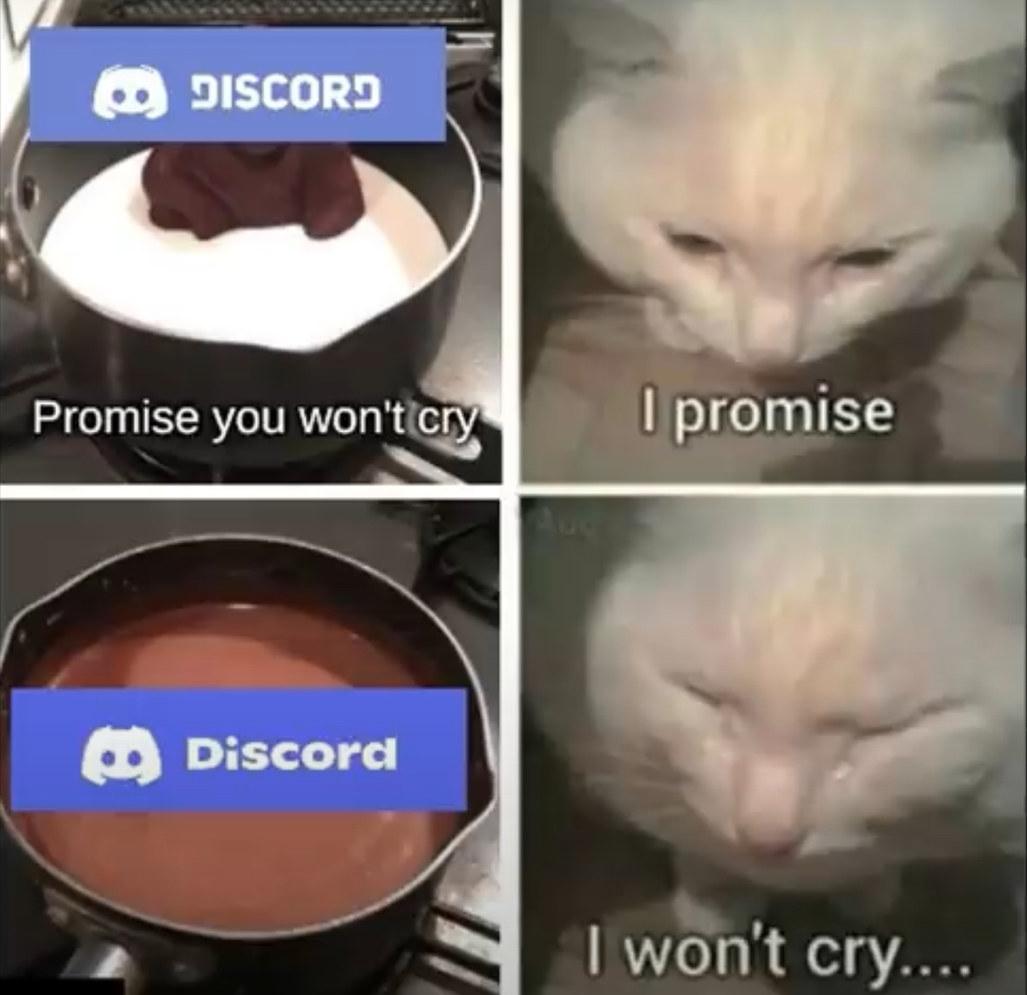 Dicord - meme