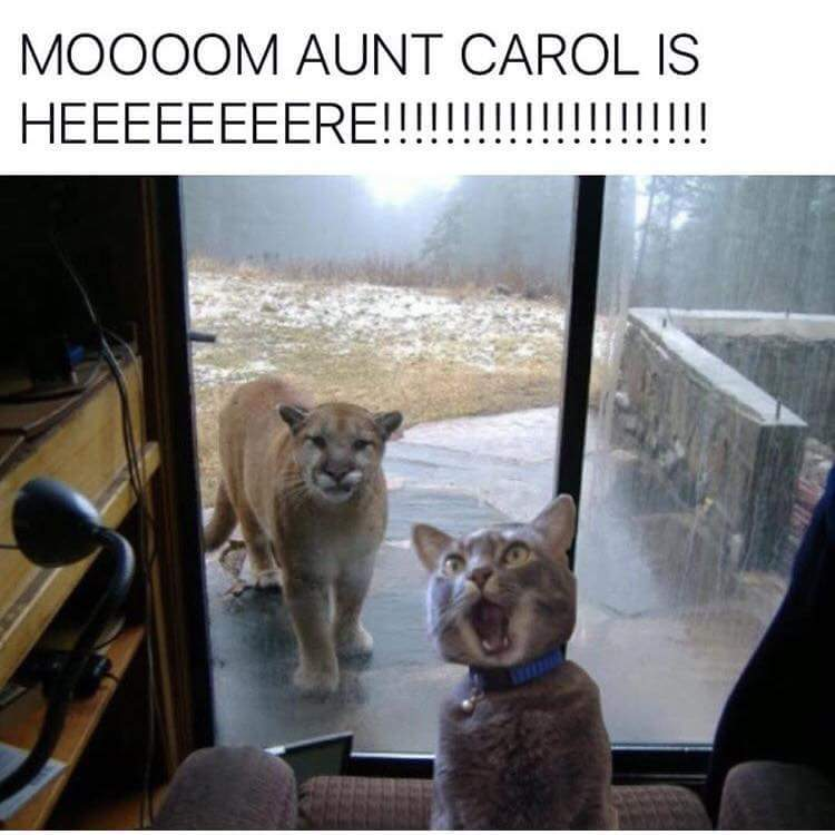Aunt Carol wants chinese - meme