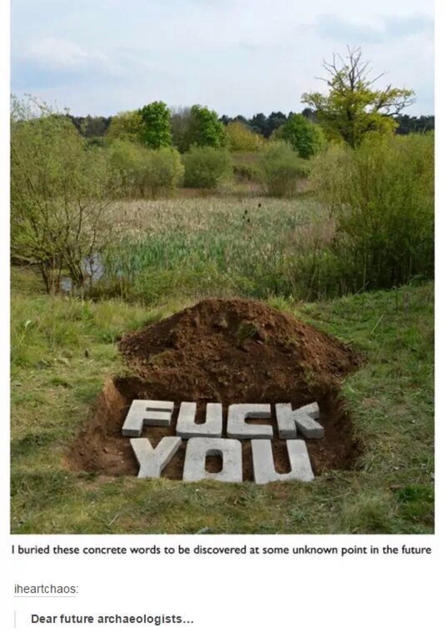 Fuck you! - meme