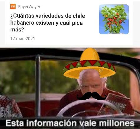 Si eres mexicano y no te gusta el chile eres marica :haters: - meme