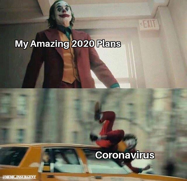 There goes 2020 - meme