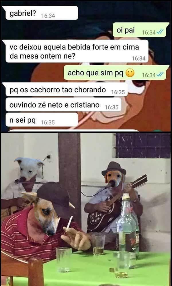 chora cachorro - meme