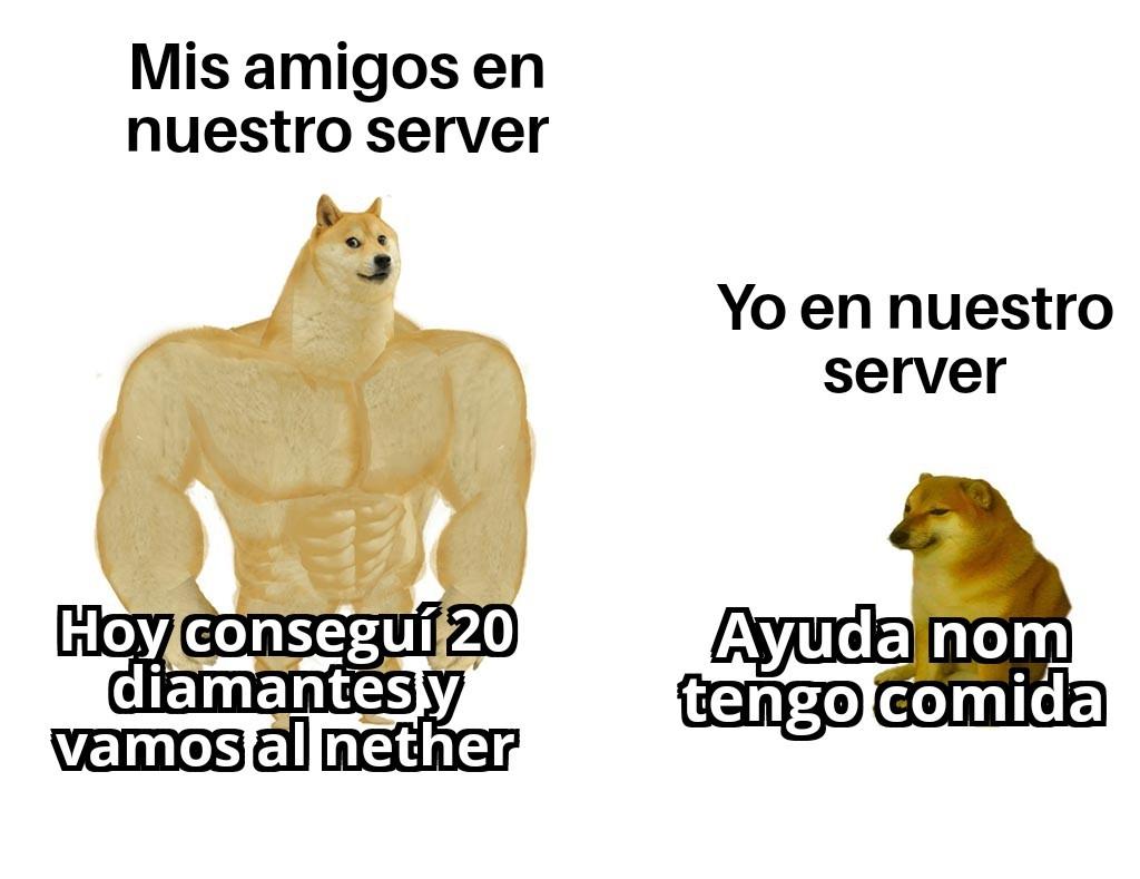 Amo el server - meme