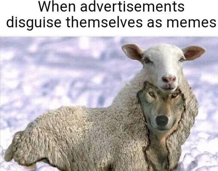 wolf in sheep's clothing - meme
