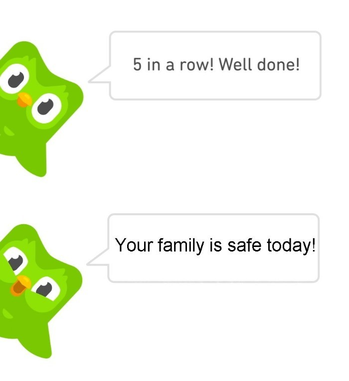 The real duolingo bird #3 - meme