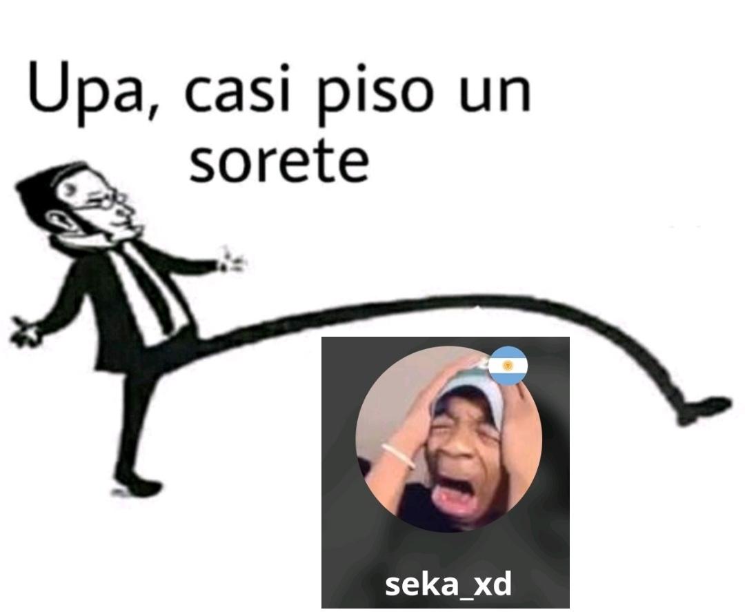Seka_xd es gei - meme